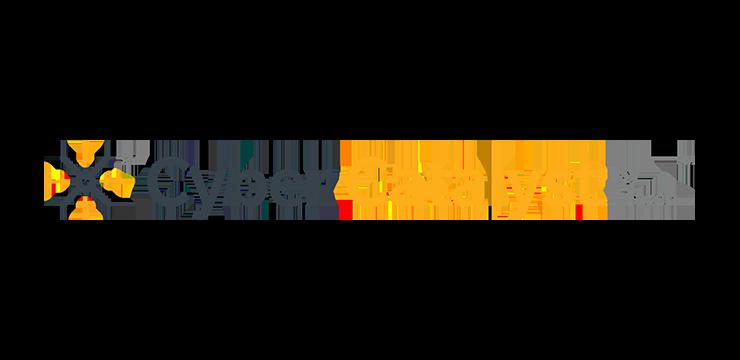 IronNet-Awards-Cyber Catalyst@2x