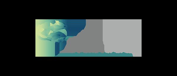 IronNet-Partner-Brain-Trace-Logo@2x
