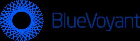 IronNet-Partners-BlueVoyant-Logo@2x